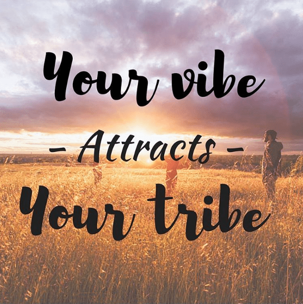 authenticity, vibe attracts tribe