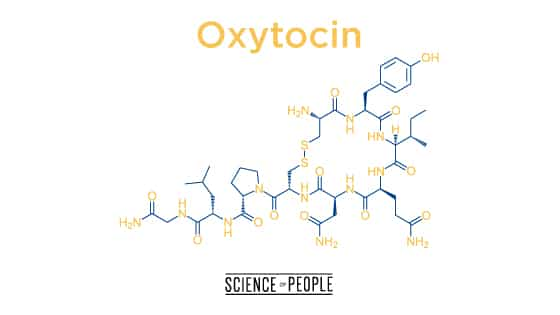 Oxytocin, the cuddle hormone is lacking in people with loneliness