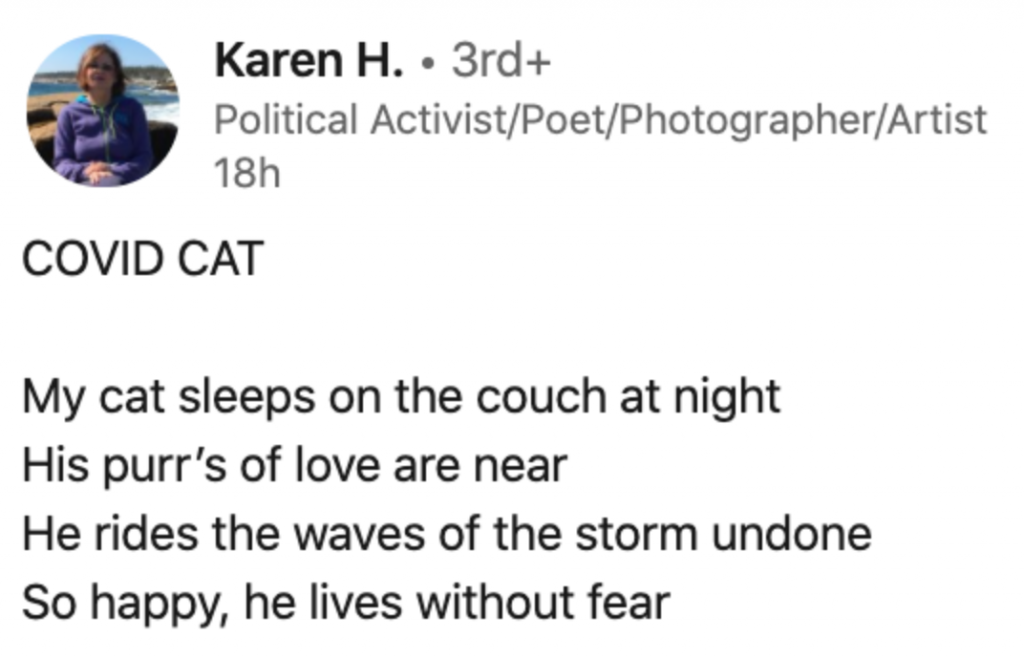 "LinkedIn post on poetry, titled ""Covid Cat"""