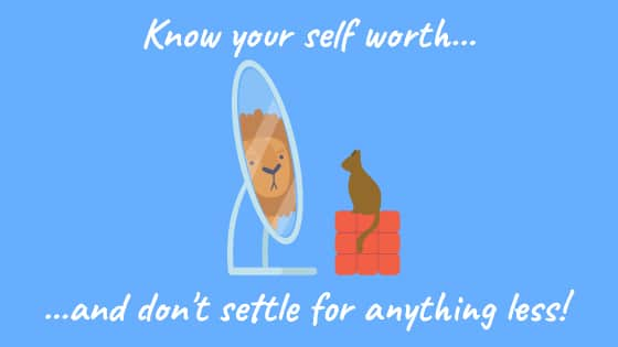 """A cat looks into the mirror and sees a lion. The text reads, """"Know your self worth... and don't settle for anything less!"""""""