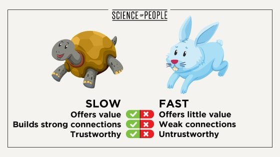 Tortoises are slow online networkers; they build up relationships on a foundation of trust. Hares go in and try to make quick relationships, but often fail.