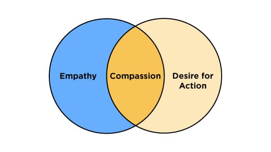 Compassion equals empathy plus desire for action