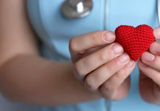 A nurse holds a heart