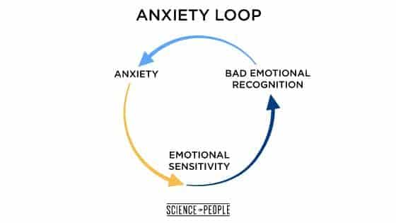The anxiety loops start with anxiety, which causes emotional sensitivity, which leads to bad emotional recognition, which leads again to anxiety.