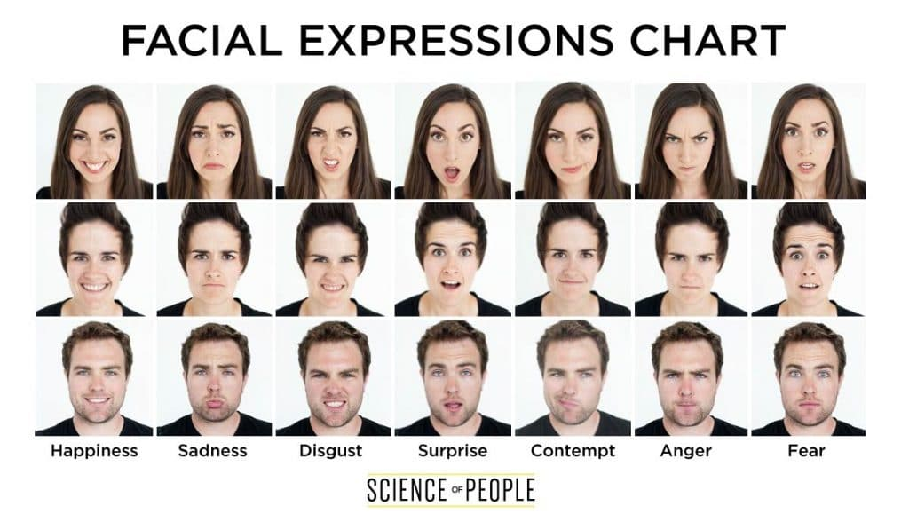 A facial expressions chart detailing the 7 universal expressions