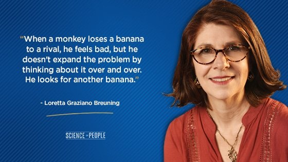 """""""When a monkey loses a banana to a rival, he feels bad, but he doesn't expand the problem by thinking about it over and over. He looks for another banana."""""""