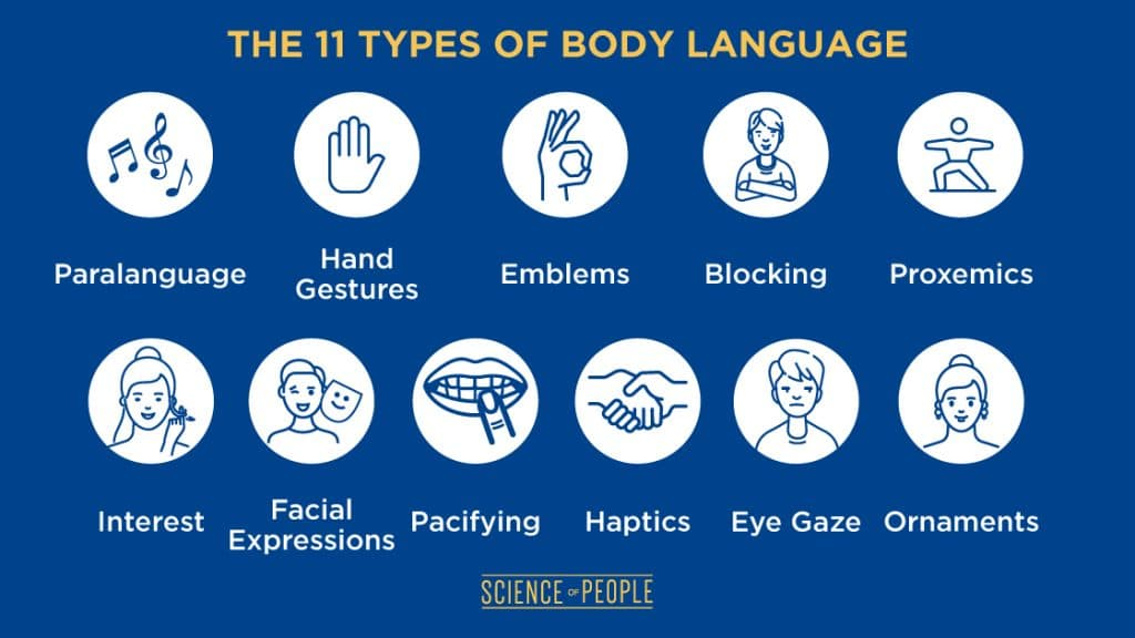 11 Types of Body Language board with different signs