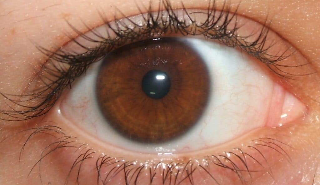 Pupil constriction eye body language cue