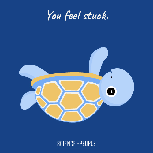 Graphic of a turtle upside down